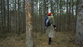 Young attractive woman with red hat wanders in forest touching tree. Young attractive woman with red hat and red skirt wanders along pathway leading trough stock video