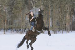 Young attractive woman riding on black horse in snowy forest. Telephoto shot Royalty Free Stock Photos