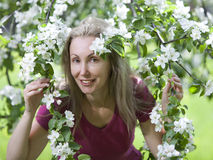 Young attractive woman standing near the blossoming apple tree. Stock Photography