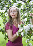 Young attractive woman standing near the blossoming apple tree. Stock Photos