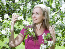 Young attractive woman standing near the blossoming apple tree Royalty Free Stock Images