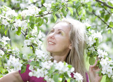 Young attractive woman standing near the blossoming apple tree Stock Photo