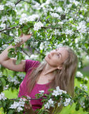 Young attractive woman standing near the blossoming apple tree. Stock Photo