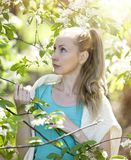 Young attractive woman standing near the blossoming apple tree Stock Image