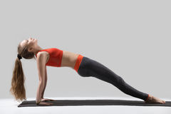 Young attractive woman standing in Upward Plank pose, grey studi. Young attractive yogi woman practicing yoga, doing Purvottanasana exercise, Upward Plank pose Stock Photography