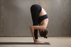 Young attractive woman standing in uttanasana pose, grey studio Stock Images