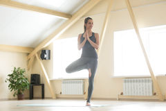 Young attractive woman standing in Vrksasana pose, home interior. Young attractive woman practicing yoga, standing in Vrksasana exercise, Tree pose, working out Royalty Free Stock Photography