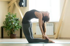 Young attractive woman stretching in Ustrasana pose, home interi Royalty Free Stock Photos