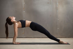 Young attractive woman in Upward Plank pose, grey studio backgro royalty free stock images
