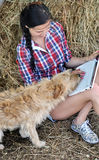 Young  attractive woman  using laptop computer with dog Royalty Free Stock Image