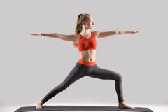 Young attractive woman in Warrior Two pose, grey studio backgrou. Young attractive yogi woman practicing yoga, standing in Warrior Two exercise, Virabhadrasana Royalty Free Stock Images