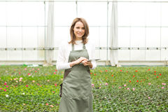 Young attractive woman working at the plants nursery using table Royalty Free Stock Photos