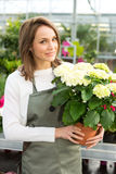 Young attractive woman working at the plants nursery Stock Photos