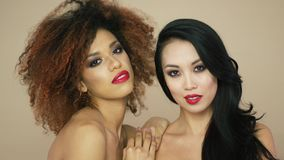 Young attractive women posing in studio stock footage