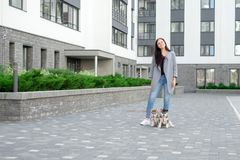 Young attractive women walking with two husky puppy on the street royalty free stock image