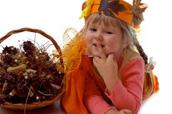 Young autumn Royalty Free Stock Photos
