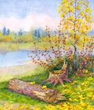 Young autumn birch near a fallen tree Royalty Free Stock Photo