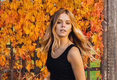 Young autumn woman with yellow leaves background. Outdoor fashion photo of  girl  beautiful hair surrounded  . Young autumn woman with yellow leaves background Royalty Free Stock Photography