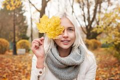 Young Autumn Woman with Yellow Maple Autumn Leaves. On Fall Nature Background stock photos
