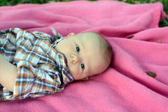 Young baby boy on a blanket. Young baby boy gazing with blue eyes Royalty Free Stock Photo