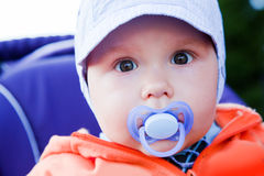 Young baby boy with a dummy in his mouth outdoors Stock Photos