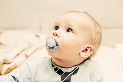 Young baby boy with a dummy in his mouth portrait Stock Images