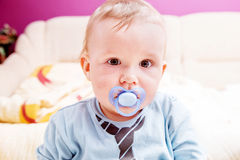 Young baby boy with a dummy in his mouth portrait Royalty Free Stock Image