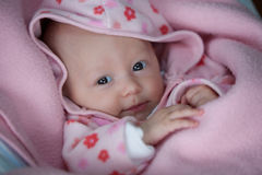 A young baby girl Stock Photography