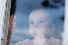 Young baby looking from window Royalty Free Stock Images