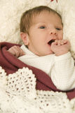 Young baby Stock Photography
