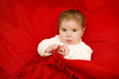 Young baby portrait Royalty Free Stock Photos