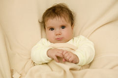 Young baby portrait Royalty Free Stock Images