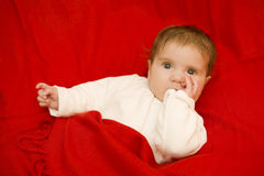 Young baby portrait Stock Photos