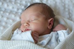 Young Baby sleeping. In blanket royalty free stock images