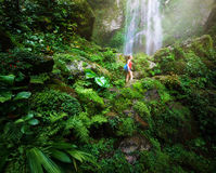 Young backpacker traveling along jungles, on background waterfal Stock Images