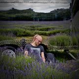 Man on lavender fields Stock Photography
