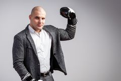 A young bald man in suit. A young bald man in a white shirt, gray suit and boxing gloves seriously looks into the camera, shows a biceps and poses on a white stock photos