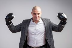 A young bald man in suit. Young bald man in white shirt, gray suit and boxing gloves smiling, showing biceps on white isolated background stock photo