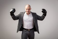A young bald man in suit. Young bald man in white shirt, gray suit and boxing gloves smiling, showing biceps on white isolated background royalty free stock photography