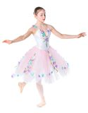 Young ballerina. Royalty Free Stock Images
