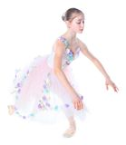 Young ballerina. Stock Photos