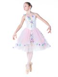 Young ballerina. Stock Images