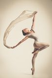 Young ballerina dancer Stock Images