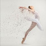 Young ballerina dancer. In tutu performing on pointes Stock Photography