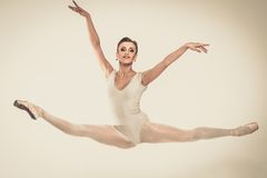 Young ballerina dancer in tutu Royalty Free Stock Photography