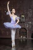 Young ballerina in a lilac Stock Photos