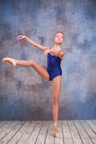 The young ballerina posing Stock Image