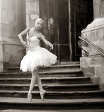 Young ballerina woman posing on stairs royalty free stock photography