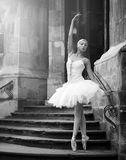 Young ballerina woman posing on stairs royalty free stock image