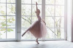 Young ballet dancer in dance class. Young classical ballet dancer girl in dance class. Beautiful graceful ballerine practice ballet positions in pink tutu skirt royalty free stock photos